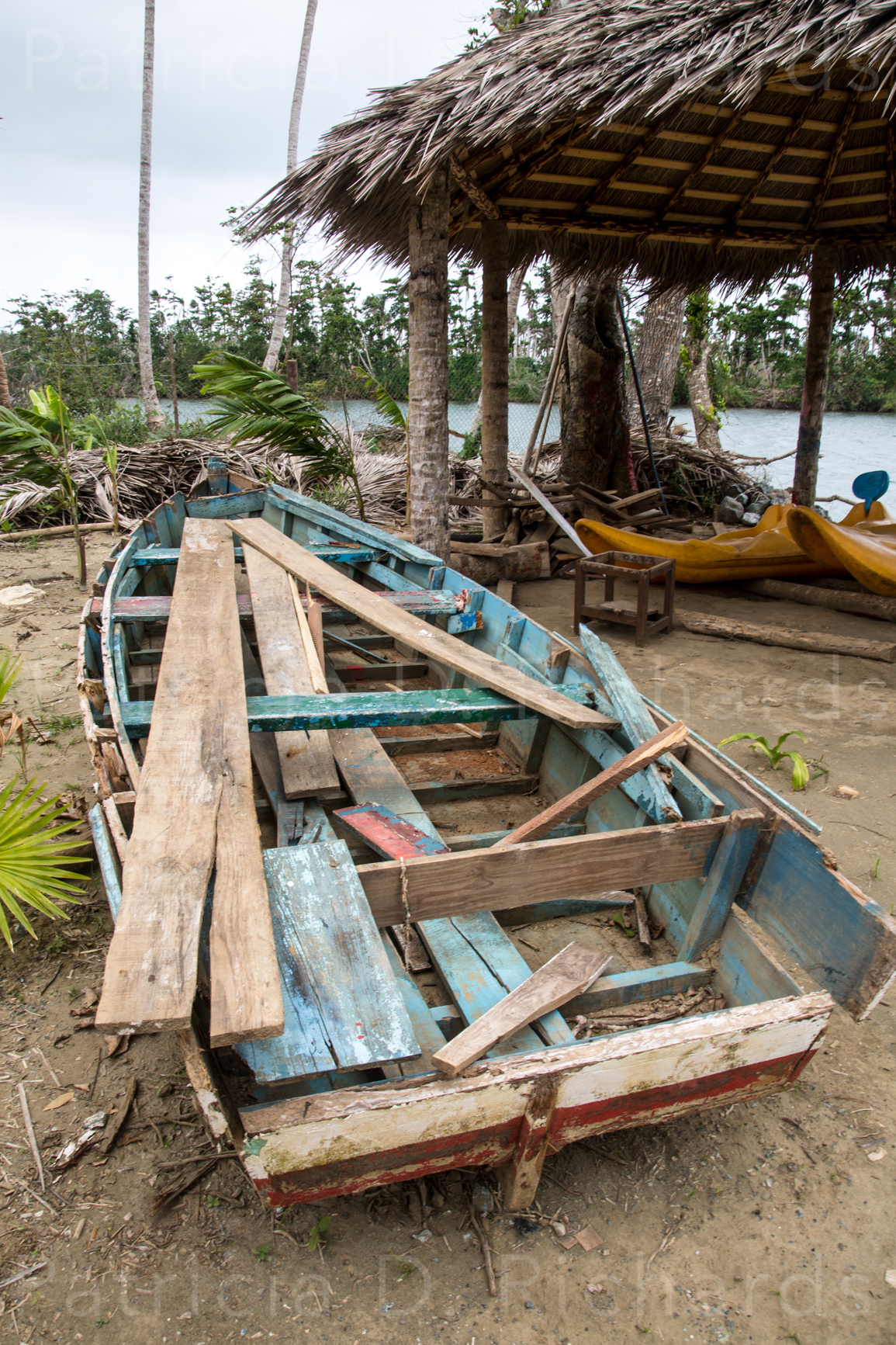 Row Boat Remains
