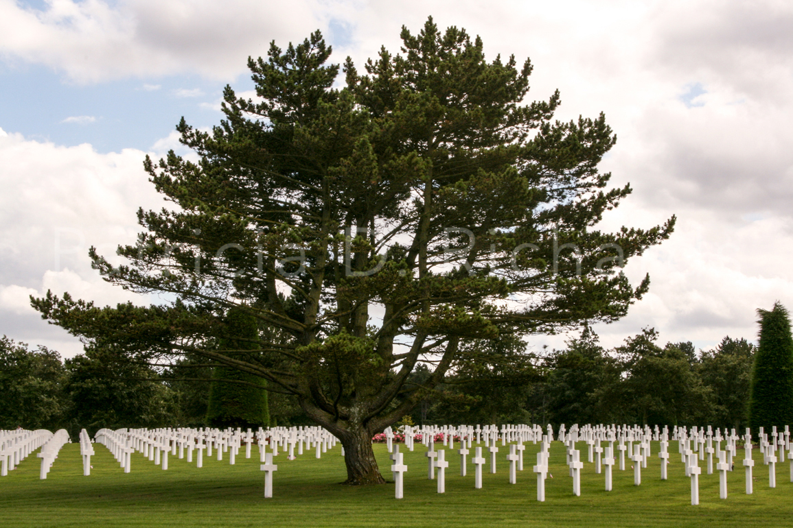 american cemetery normandy