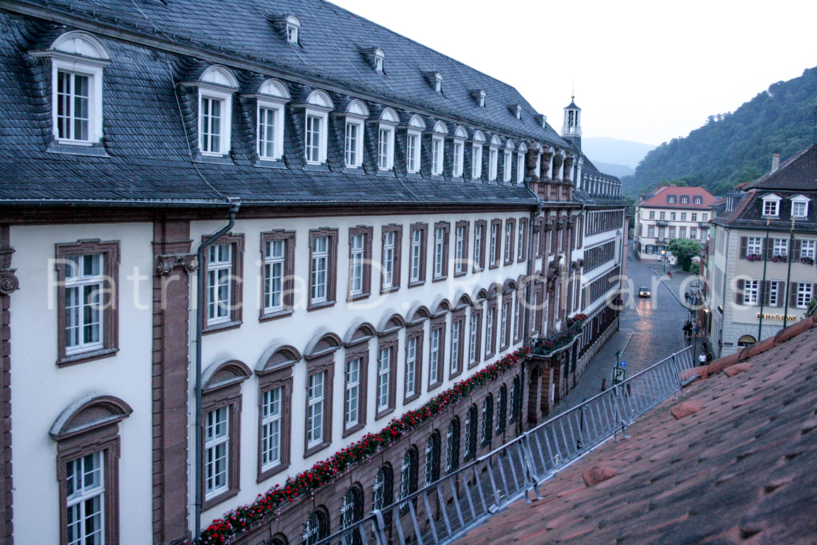 heidelberg in the rain