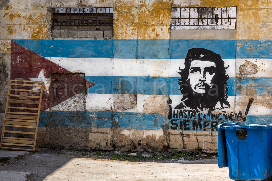Che with Trash Bin